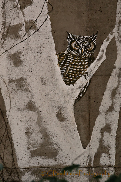 Great Horned Bridge Owl
