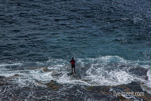 Malabar Headland Coastal Walk