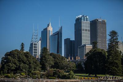 Sydney Skyline over Botanic Gardens