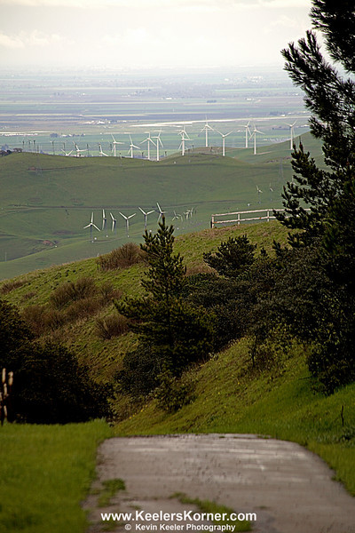 Altamont Pass Wind Turbines from Morgan Territory Rd. March 19, 2011