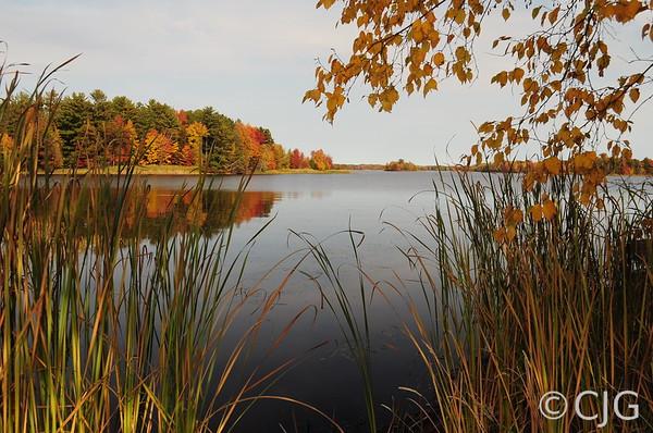 Lake Side Fall Colors
