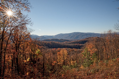 Fall in The Great Smoky Mountains National Park