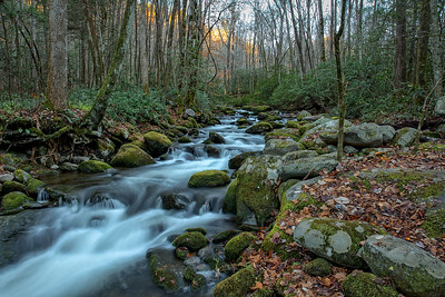 Stream in the Great Smoky Mountains National Park