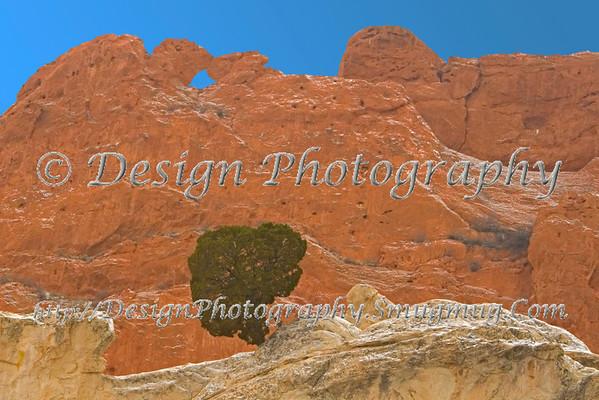 Kissing Camels with Juniper Tree, Colorado Springs, Colorado
