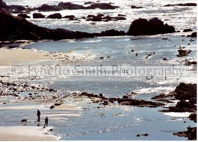 beach-60039950-Owtmk