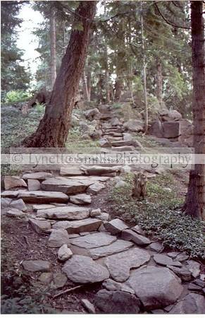 path2-60041166-Owtmk