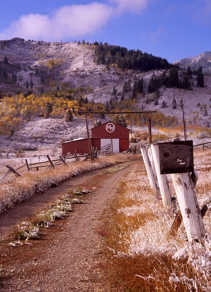 """Road Home""<br /> <br /> MW Ranch, Parley's Summit, Utah."