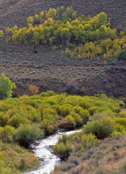 East Canyon Creek