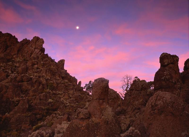 Rattlesnake Sunrise