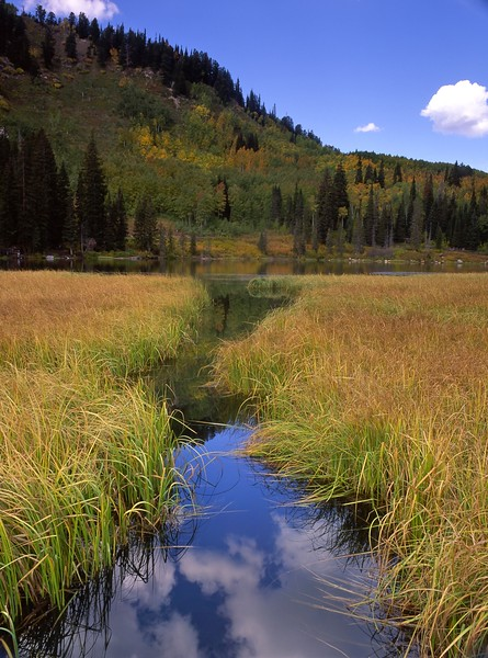 Reflection Silver Lake, Big Cottonwood Canyon, Utah