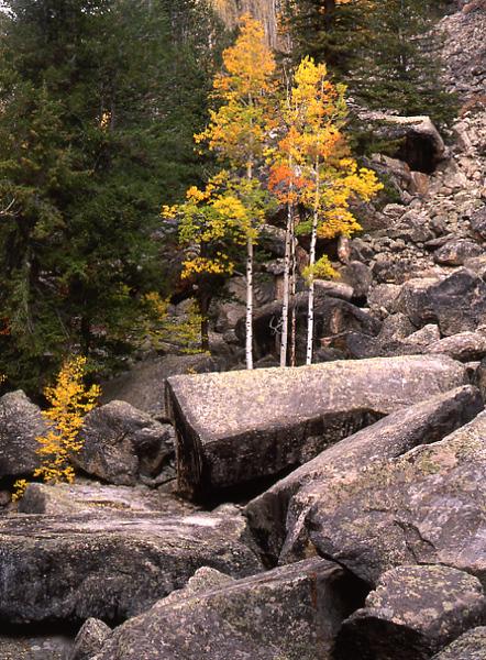 Basalt Colors
