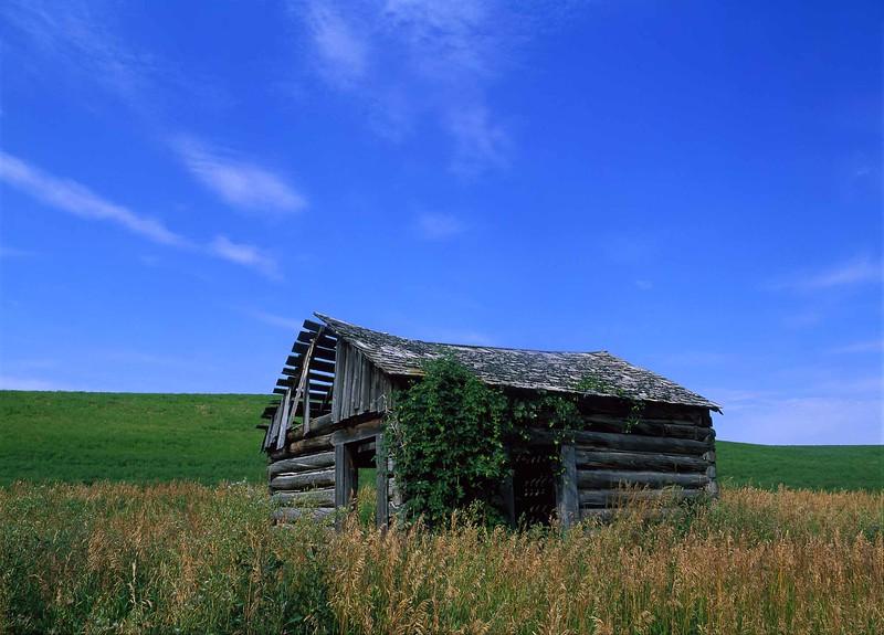 Swan Valley Cabin