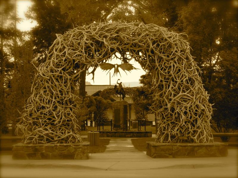 Antler Arch - Jackson