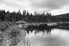 rock pond_1313bw_2