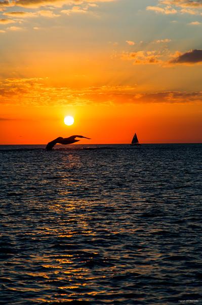 florida sunset_0433