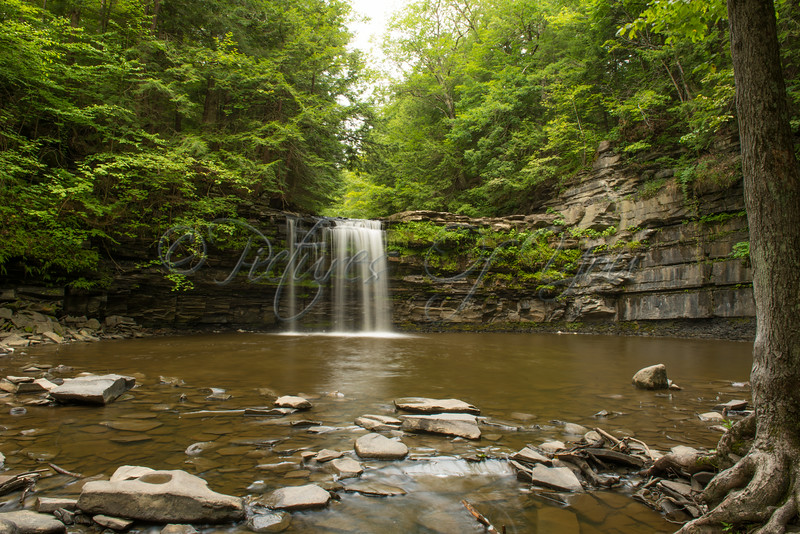 Bozen Kill Falls 004<br /> <br /> Christman Sanctuary, Bozenkill Falls. Located in Duanesburg, Schenectady County, NY