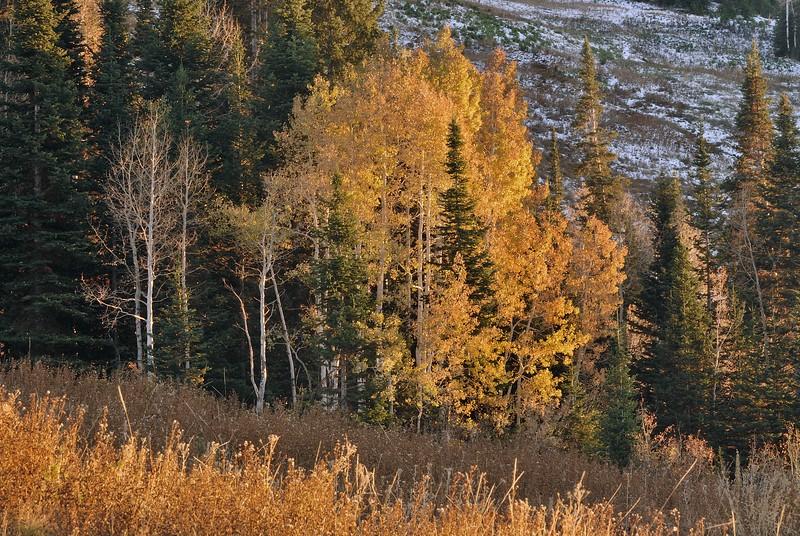 Utah Sunset in Autumn