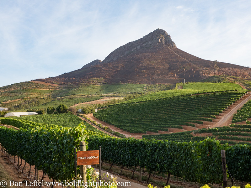 South Africa Delaire Graff Winery