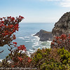South Africa Cape Point View