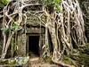 Cambodia Web023