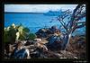 Galapagos_002-5DMK2__MG_6416