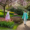 Holland Keukenhof Gardens Forest People
