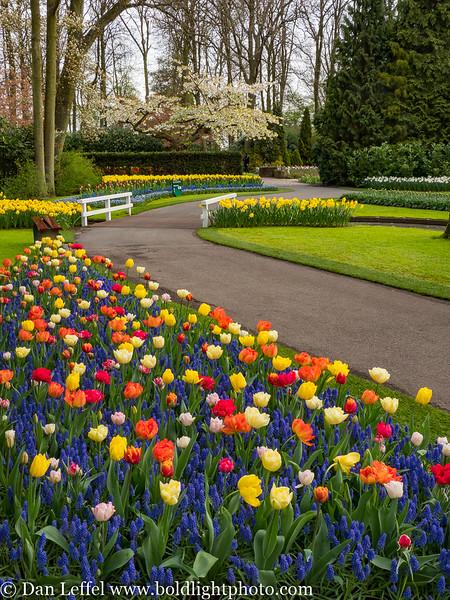 Holland Keukenhof Gardens Path