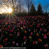 Holland Keukenhof Gardens Sunset