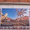Italy Cinque Terre Vernazza