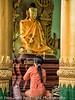 Myanmar Web019