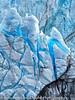 Glaciar Perito Moreno Closeup