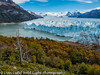 Fall Color at Glaciar Perito Moreno