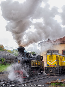 Carpathian Forest Steam Train Romania