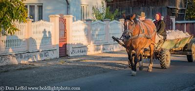 Buchovina Romania