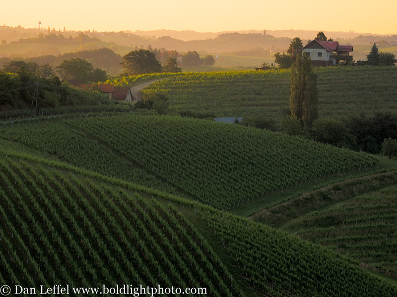Slovenia Jeruzalem Wine Country Sunrise