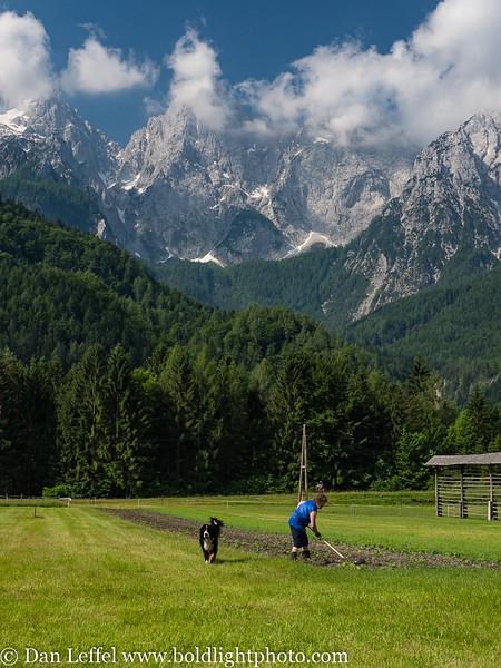 Slovenia Julian Alps Garden