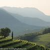 Slovenia Goriska Brda Wine Country