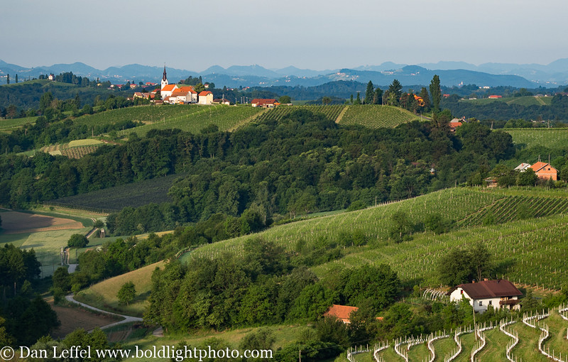 Slovenia Jeruzalem Wine Country