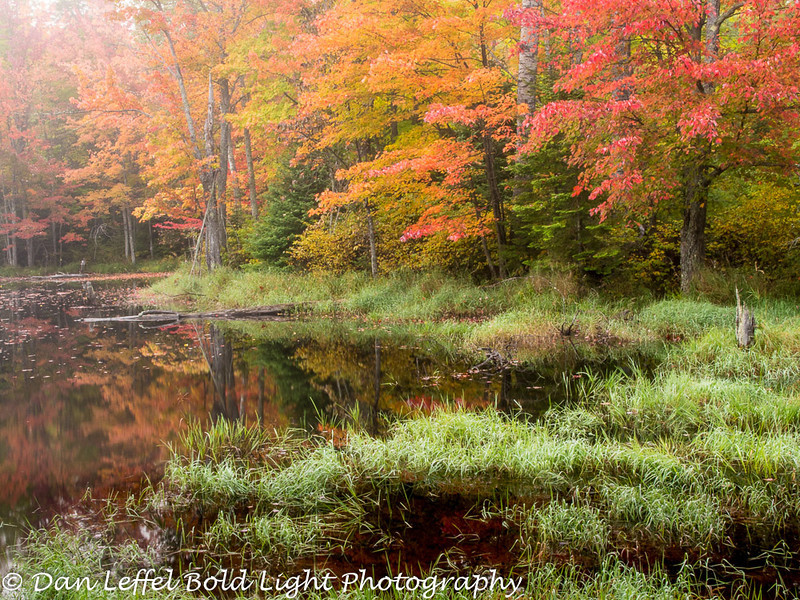 Northern Wisconsin Fall Color