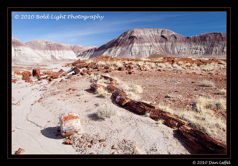 1_Petrified Forest_5D-Mark-II__MG_8720