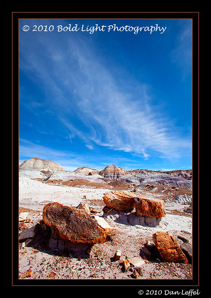 1_Petrified Forest_5D-Mark-II__MG_8788-Edit