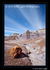 1_Petrified Forest_5D-Mark-II__MG_8799