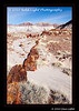 1_Petrified Forest_5D-Mark-II__MG_8719