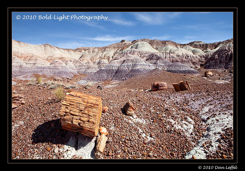1_Petrified Forest_5D-Mark-II__MG_8766-Edit