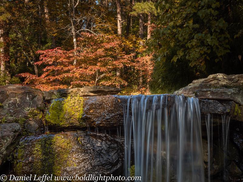 Garvan Gardens Hot Springs Arkansas