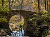 Garvan Gardens Hot Springs Arkansas