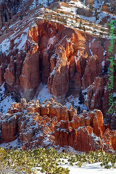 Bryce-Canyon-Detail_0933