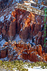 Bryce-Canyon-Detail_0933