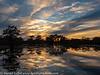 Caddo Lake Texas Fall Colors Sunset