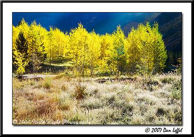 _MG_6681_CO_Fall_0907-RGB